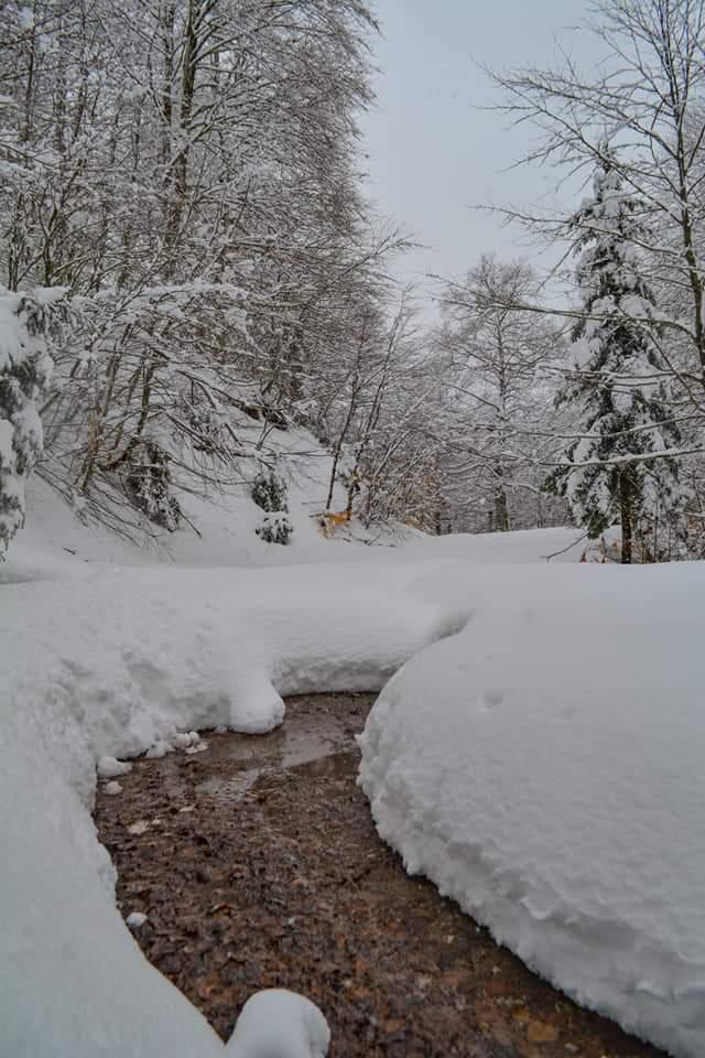 Θάφτηκαν στο χιόνι τα ορεινά Τρικάλων- φωτό