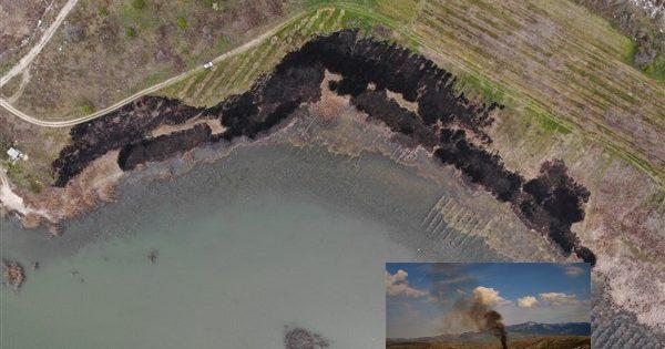 Βεγορίτιδα SOS: Αφανισμός της πανίδας και χλωρίδας λόγω αλόγιστης καύσης καλαμιών